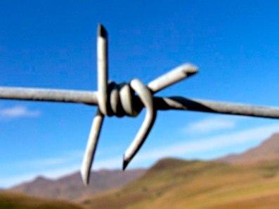 Boundary wire